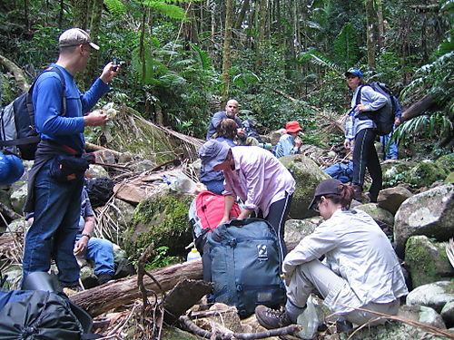 Dalyymple Climb 2008 007