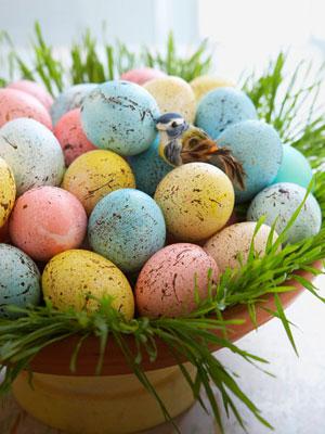 Speckled-eggs-0410-s3-medium_new
