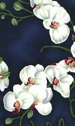 Royalorchids310112